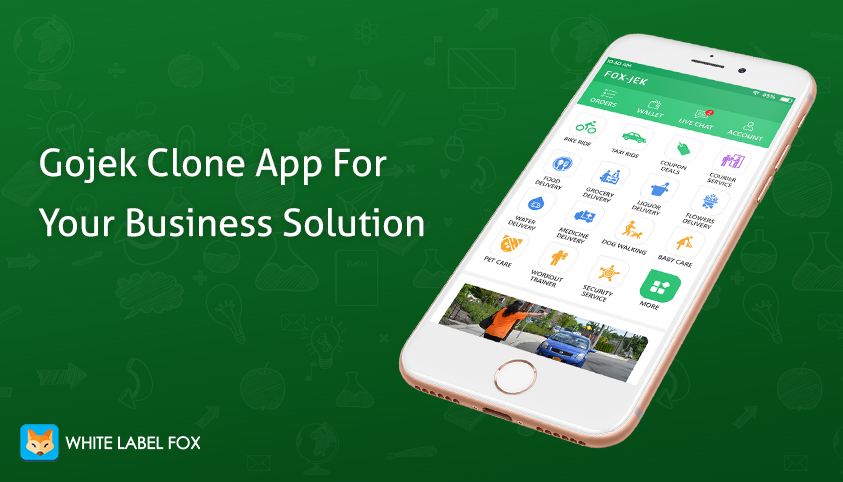 gojek clone app for business startup