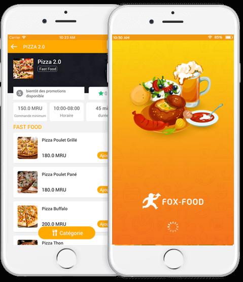 user app demo